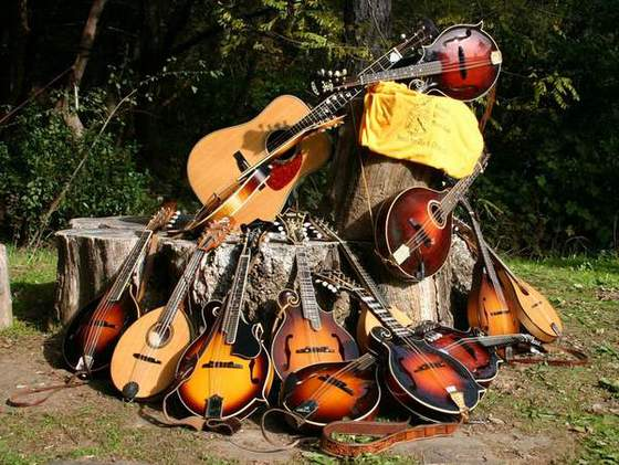 1 - MandoPile(Aside from mandolins & guitars, you're liable to hear anything from ukeleles to fiddles, bass, harmonica or saw, to name a few)
