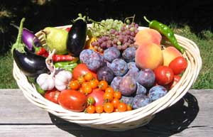 2 - Organic Produce Basket(We offer fresh, seasonal produce from our gardens)