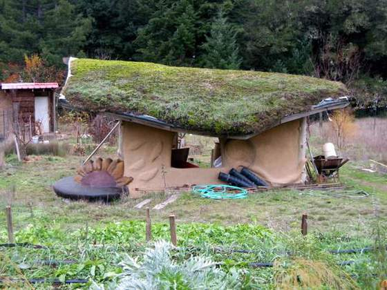 Living Roof (Nice lines on this beautiful garden shed)